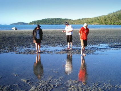 Fossicking at low tide