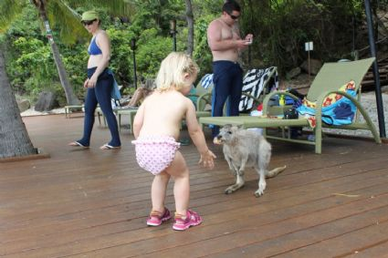 Olivia is chatting with the locals on the beach at Daydream Island.