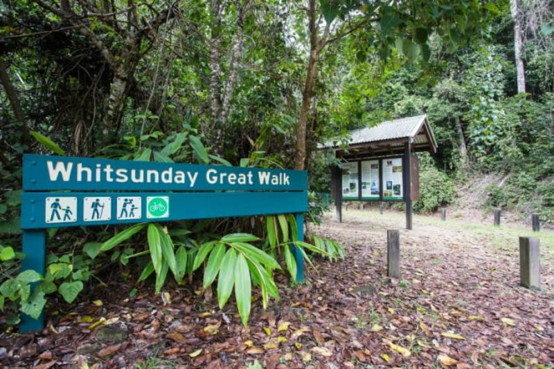 Bushwalking Whitsundays
